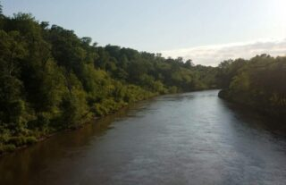 river with trees on both sides under clear blue sky