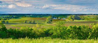 Panoramic shot of Iowa fields